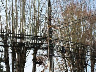 En los próximos meses podría comenzar retiro de cables en desuso en la comuna