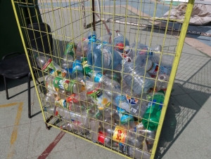 Oficina Municipal de Medio Ambiente se adjudicó fondos con los que se habilitarán jaulas PET en 10 p