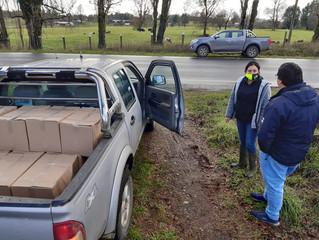 Municipio comenzó entrega de Cajas de Alimentos en sectores rurales de la comuna