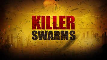 Killer Swarms
