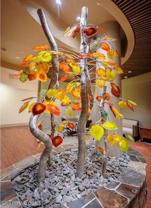 Aspen Grove, Troy Corliss, Truckee, CA 2012