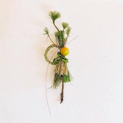 根付き松の正月飾り