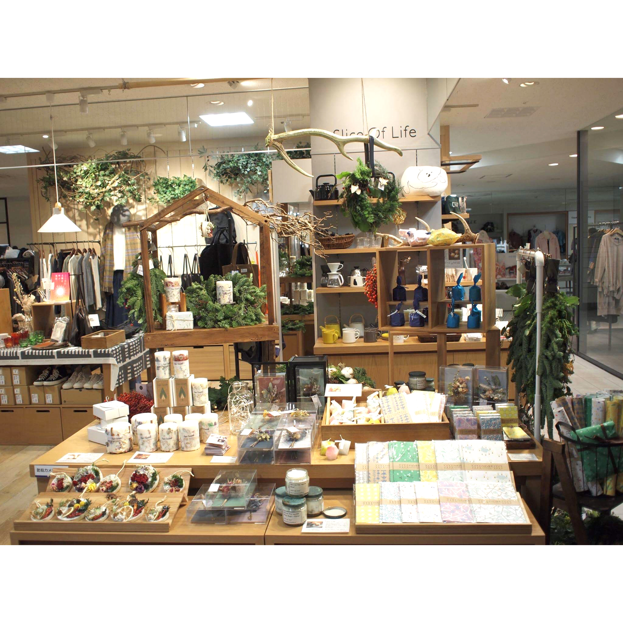 展示販売「Botanical Holiday」