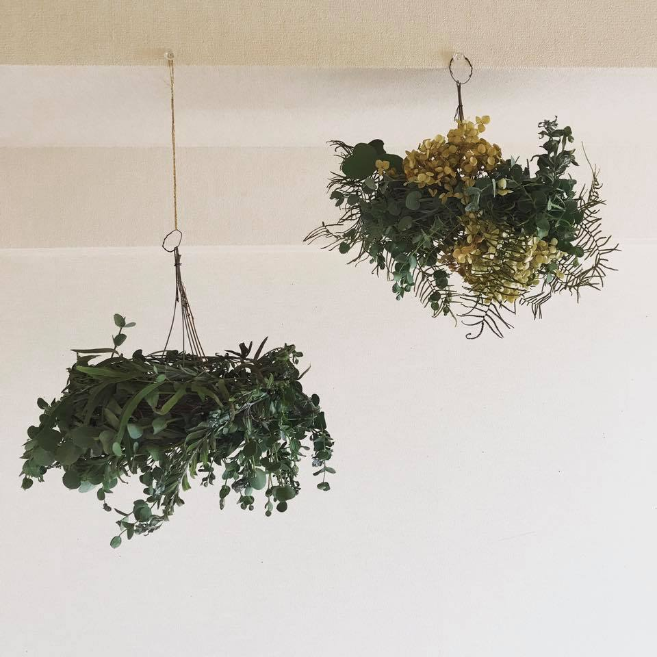 Hanging Green