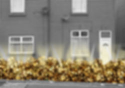 rubbish-on-street-gold.jpg