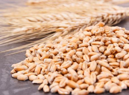 Die Banken-Spreu trennt sich gerade vom Weizen!