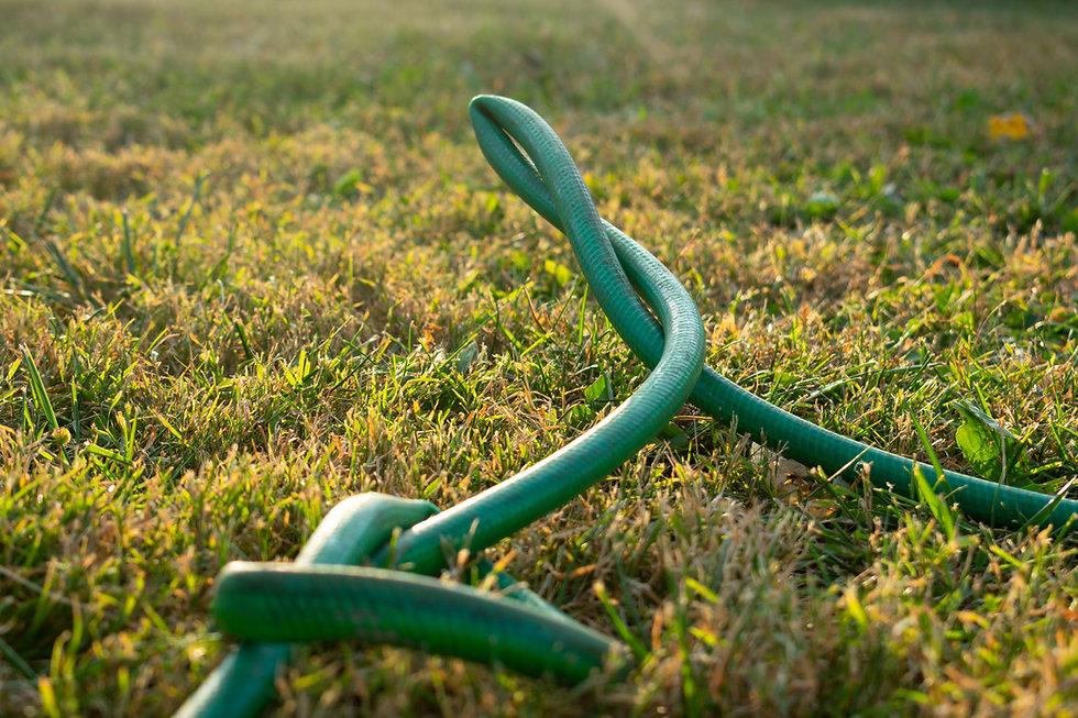 a green kinked garden hose.jpg