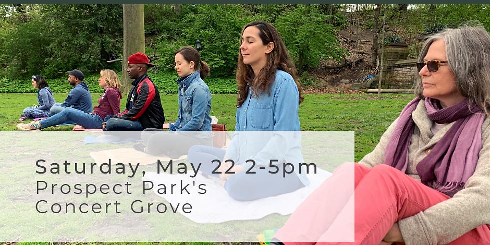 World Meditation Day at Prospect Park