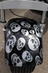 B-skull-front-detail.jpg