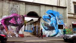 Rood et Nepo - Milan, Italy 2014