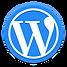 Revive-Marketing-Wordpress-Icon-Footer.p