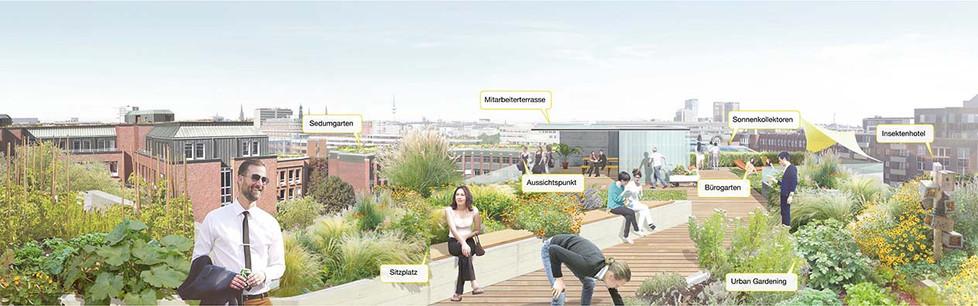 Vision I City Süd