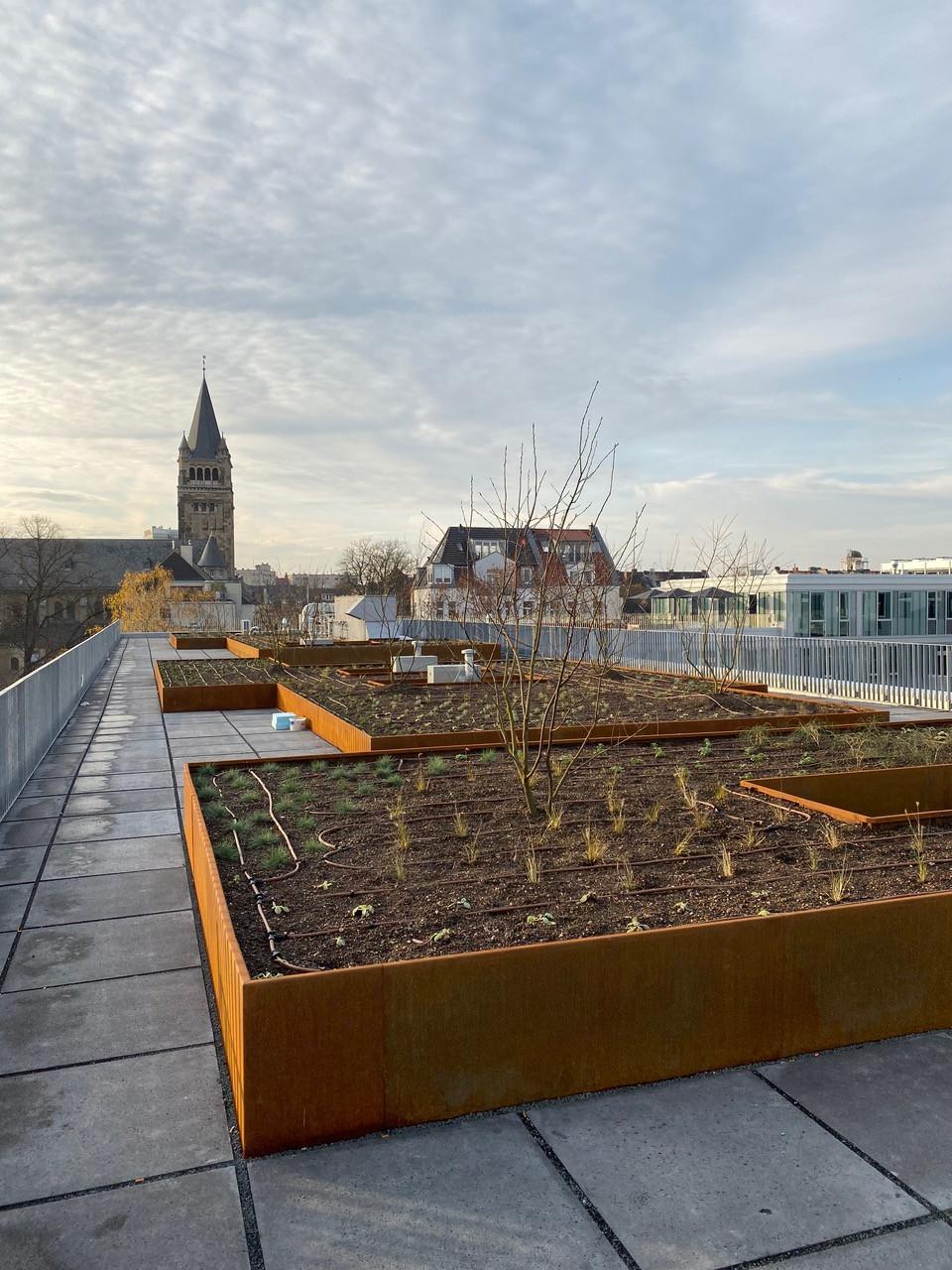 Realisierung - Blick über das Dach