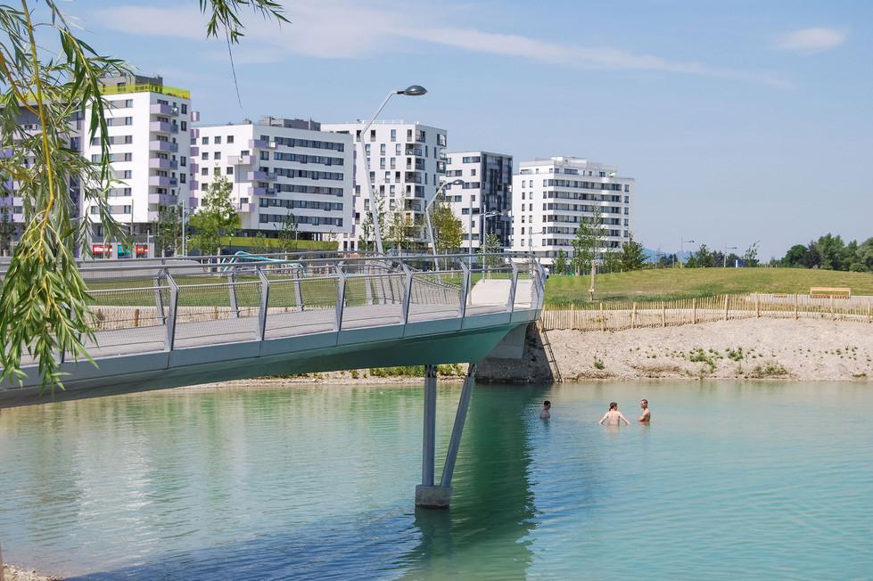 Seenlandschaft im Sommer
