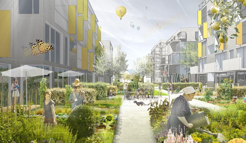 Gemeinschaftliche Gärten im Teilquartier Plattform
