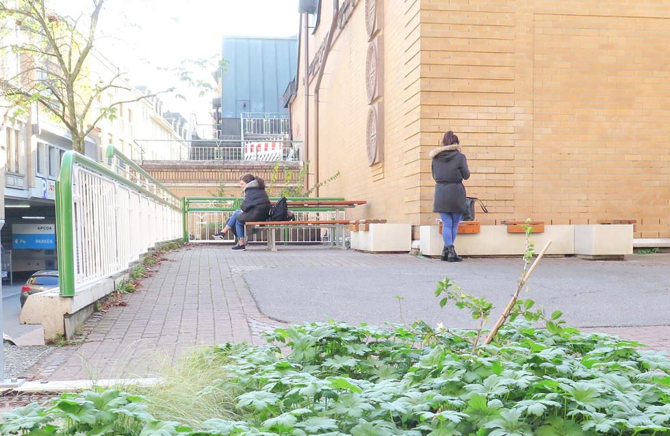 Gegengerade Sitzelement aus Beton I Holz