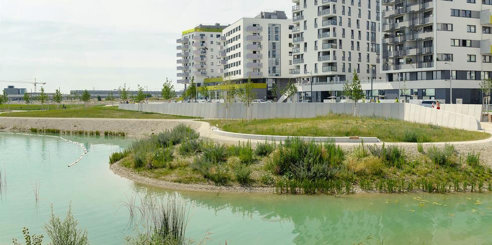 Blick vom Ufer in Richtung Quartier