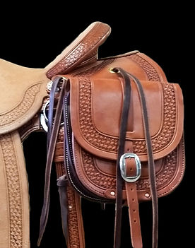 Weastern saddle bags