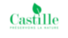 LOGO GREEN CASTILLE ecrit.png
