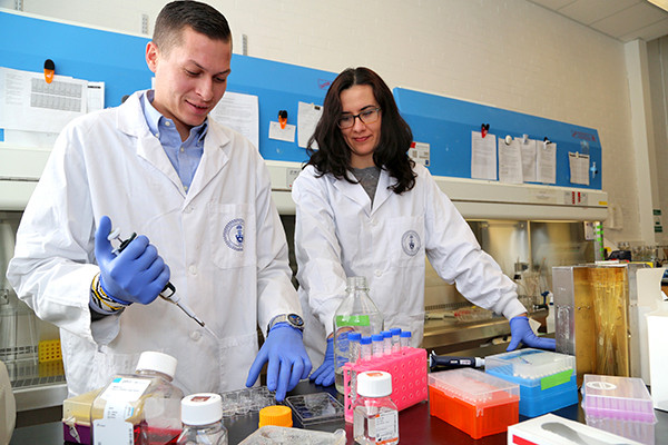 Dr. Lewis Reis (left) and Professor Milica Radisic used their unique peptide-hydrogel biomaterial to heal chronic wounds faster than commercially available products. (Photo by Marit Mitchell)