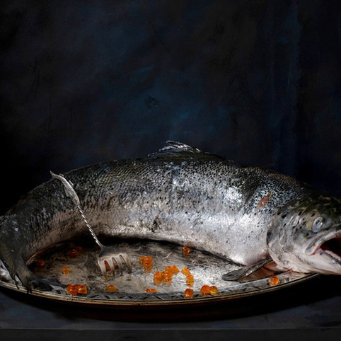 Nature morte au saumon