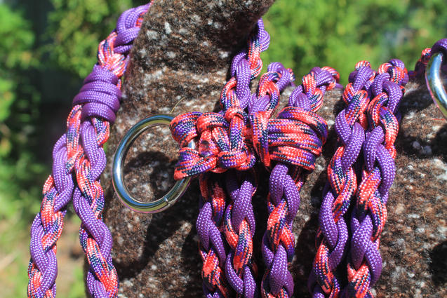 Braided paracord leash with waist trainer