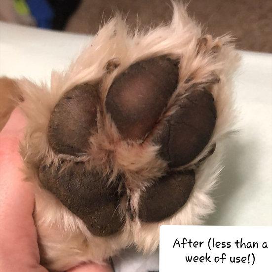 Healing and moisturizing pet paw butter