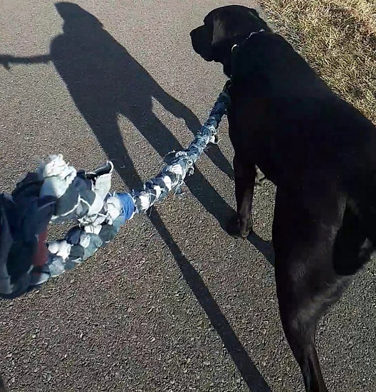 Upcycled denim pet leash in blue