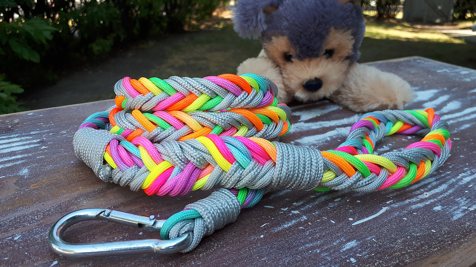 Braided Leash - silver/pastels