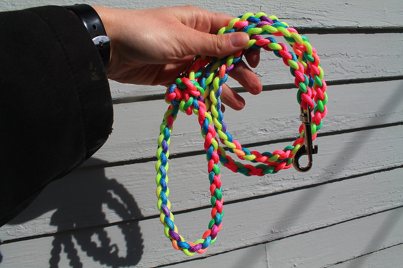 Pastel braided leash - small