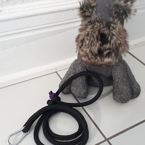 Rope Leash - purple/black
