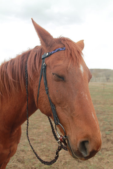 Braided Pony Reins - brown/black