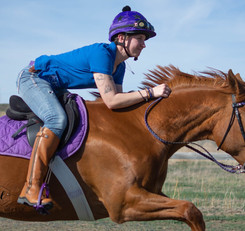Sarah jumping her chestnut mare in handmade braided paracord roping reins.jpg