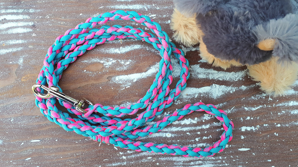 Braided Leash - pink/blue