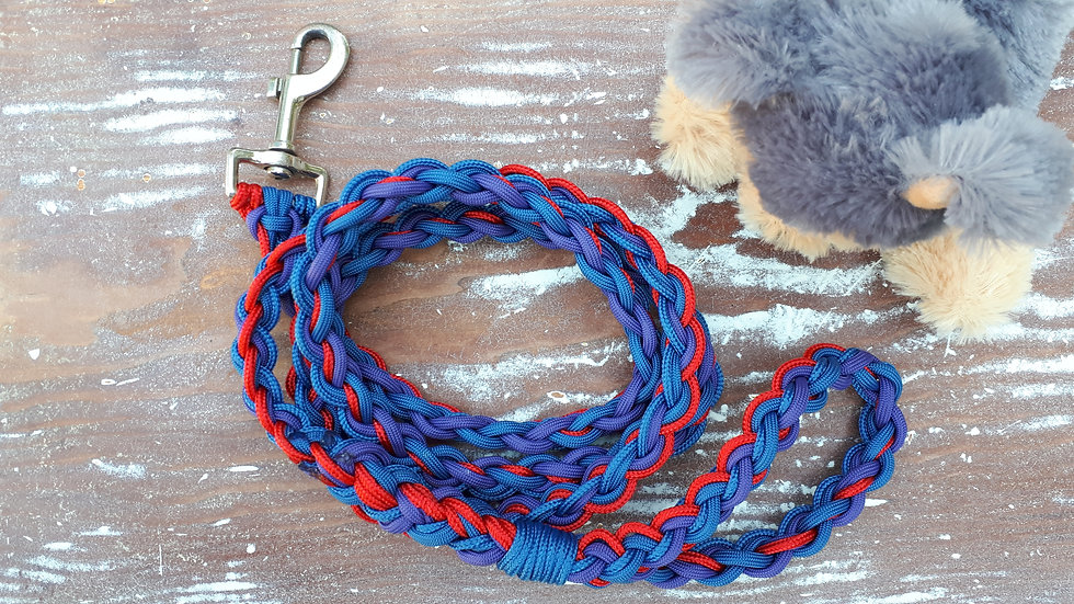 Braided paracord pet leash in red, blue and purple