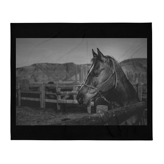 QH at the hitching rail blanket