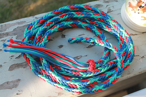 Paracord lead rope, blue & red