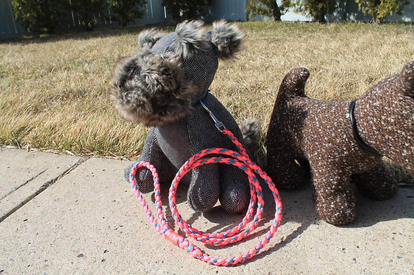 Pink & blue braided leash - small