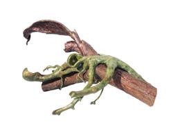Menagerie of Alien Creatures