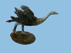 The Ostrich (II)