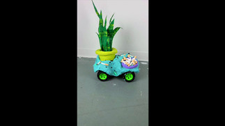 plant car in motion.mp4