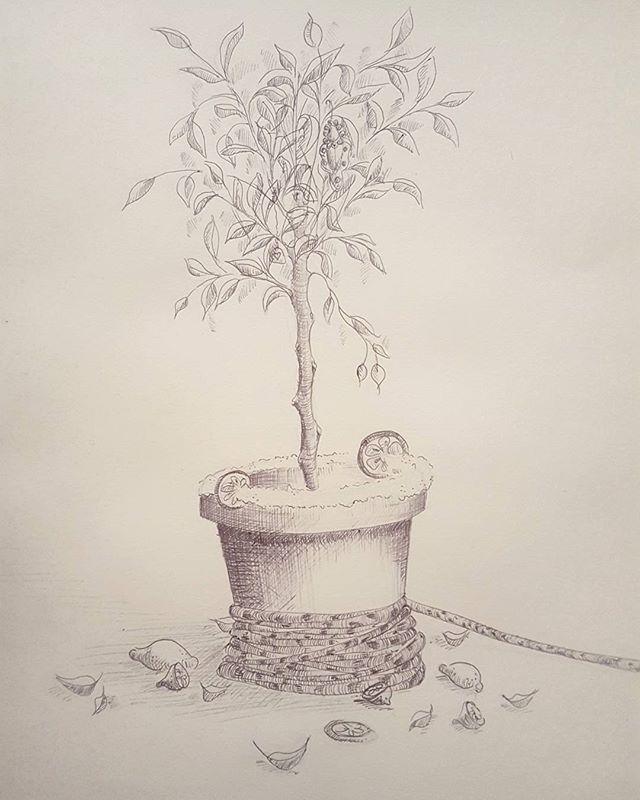 Self portrait as a tree-garita