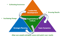 S³- Sustainable Strategies Segment: Strategic Alignment and Sustainability