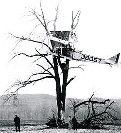 WW1 Curtiss Jenny crashes into a tree