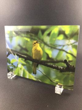 5x7 Custom Glass Photo Panel