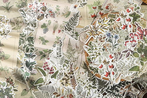 botanical plants sticker and paper pack