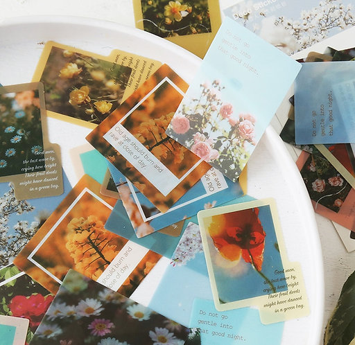 Polaroid PET Sticker Flakes Pack