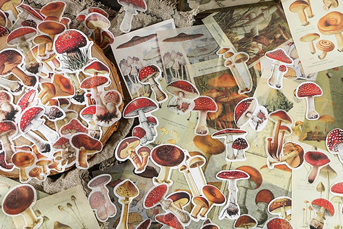 Mushroom Sticker Flakes and Paper Ephemera Pack
