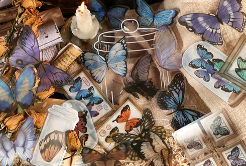 butterfly PET stickers pack