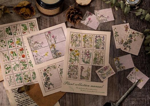 botanical plants sticker sheet